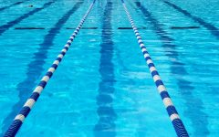 Swimming: What's Changed?
