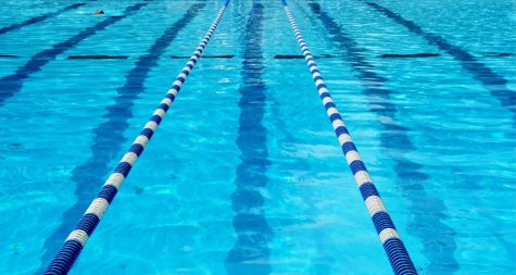 Swimming: What